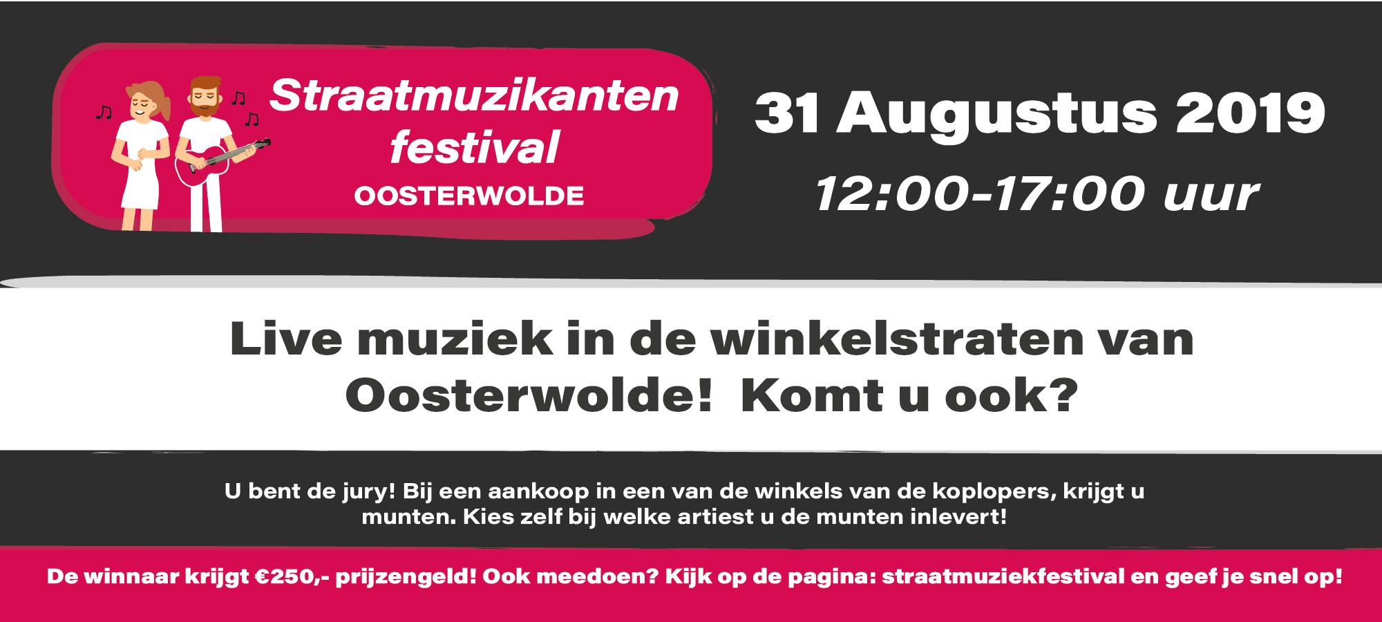 Website Banner - Straatmuziekfestivaloosterwolde